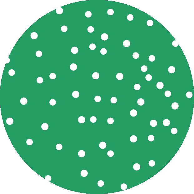 Butten_Dots_Manuel_Ort